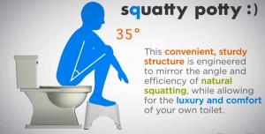 1609150808524_position_toilette